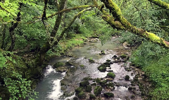 Agua Dulce, Agua Salada: Los Manantiales Del Valle De Ollo